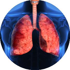pulmunologia_astma