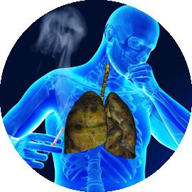 pulmunologia_pochp